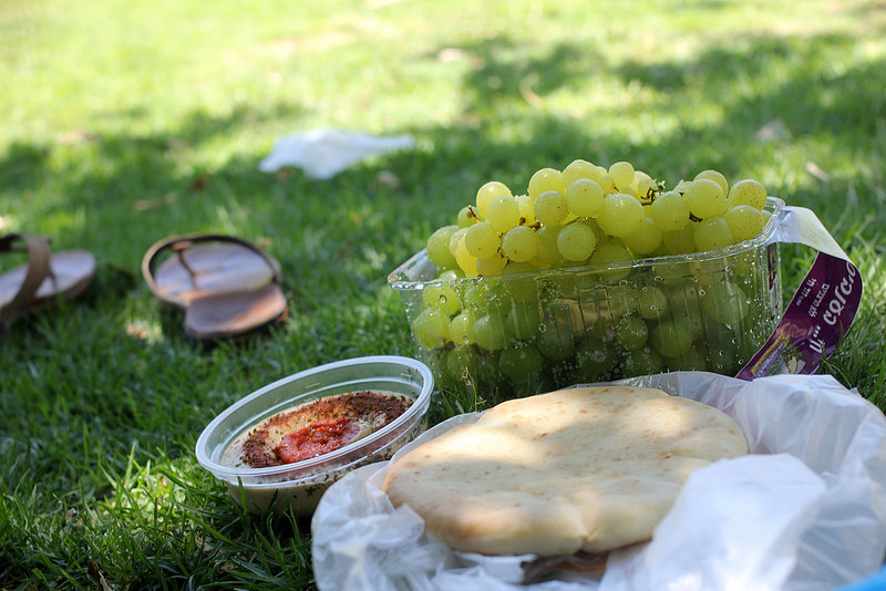 My picnic lunch.